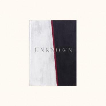 Unknown 2