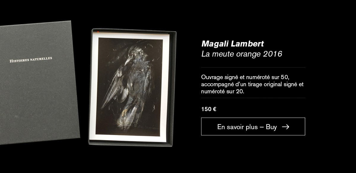 Edition spéciale La meute orange 2016